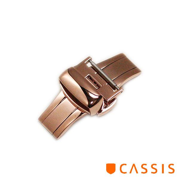 CASIS-DB